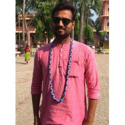Narsimhadev Pavitra Large